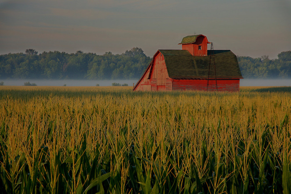 farm and crop insurance Columbus OH